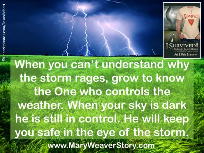 12 storm